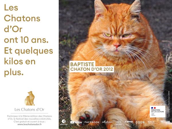 Les Chatons d'Or : découvrez les affiches lauréates de l'édition des 10 ans !